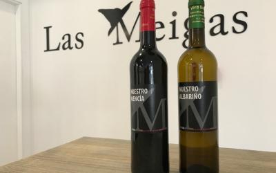 ¿Tinto o Blanco? Ya están aquí nuestros vinos gallegos