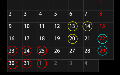 Calendario especial diciembre '19